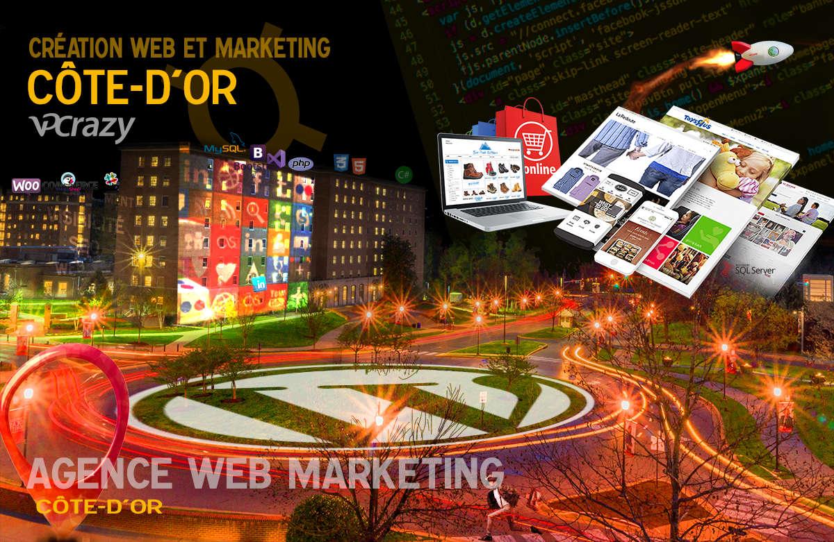Créateur de site internet Côte-d'Or et Marketing Web