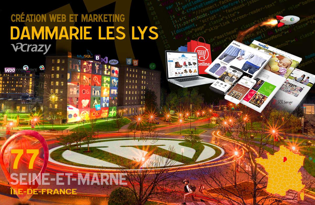 Créateur de site internet Dammarie-les-Lys et Marketing Web