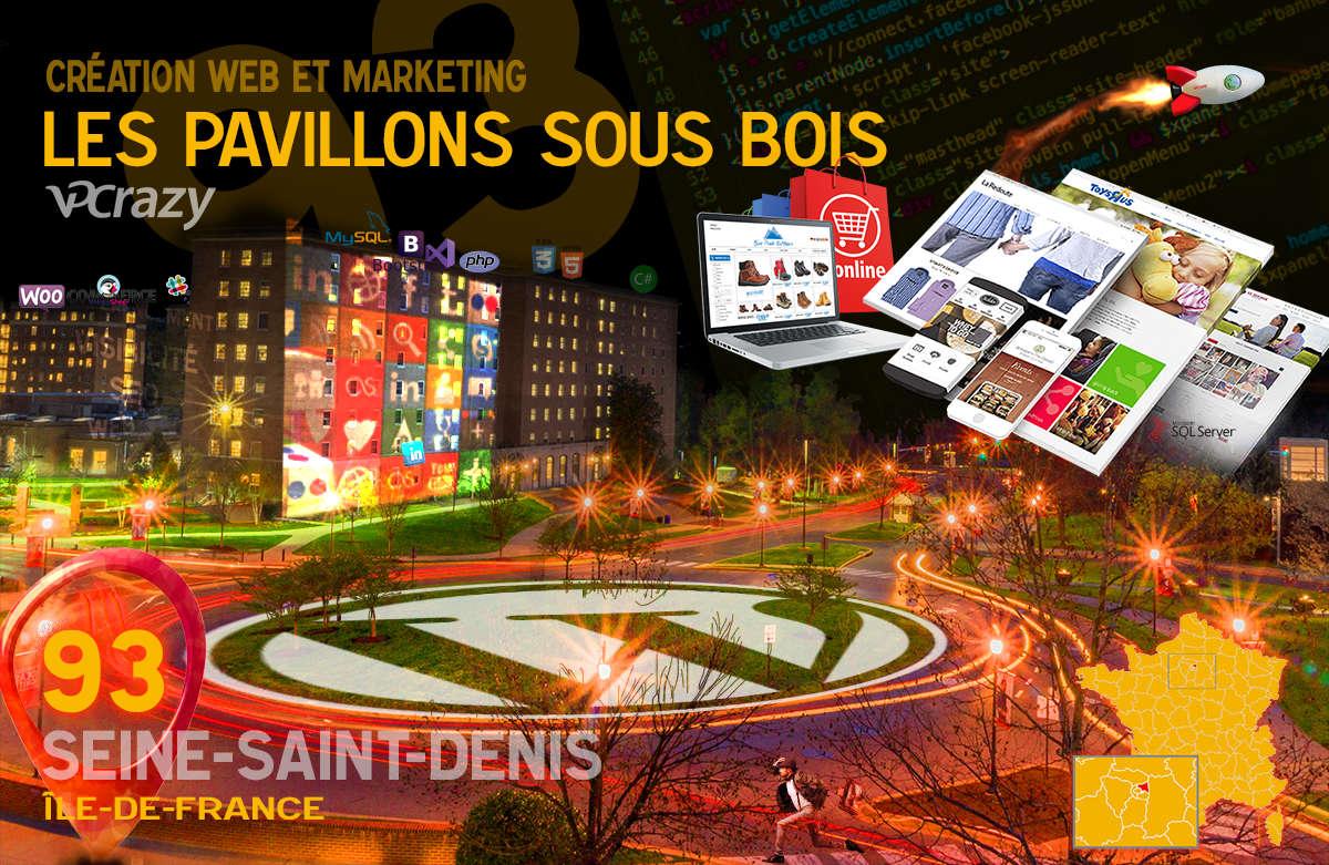 Créateur de site internet Les Pavillons-sous-Bois et Marketing Web