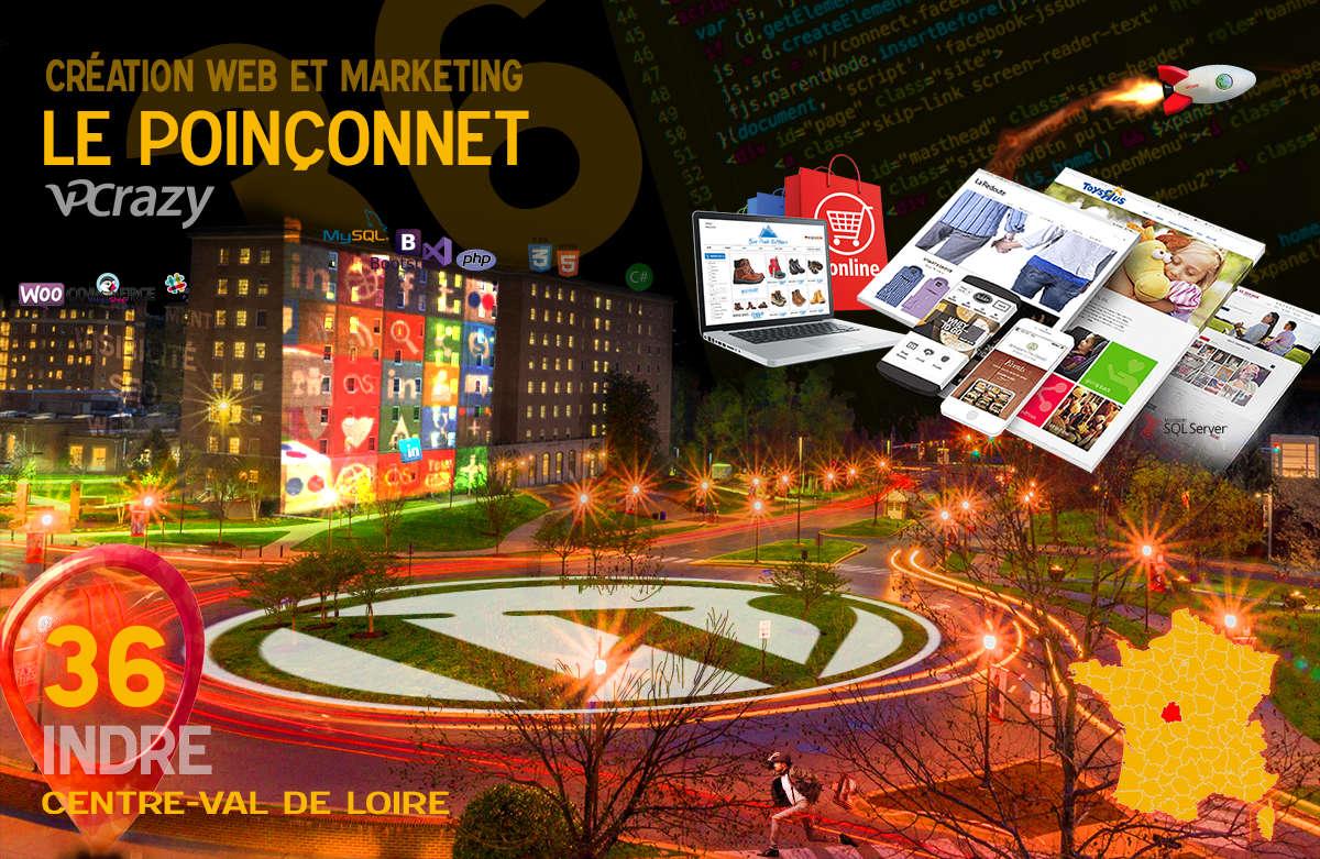 Créateur de site internet Le Poinçonnet et Marketing Web