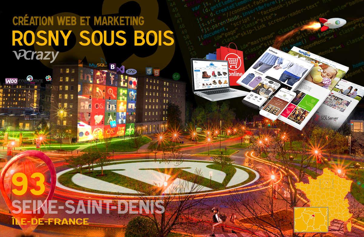 Créateur de site internet Rosny-sous-Bois et Marketing Web