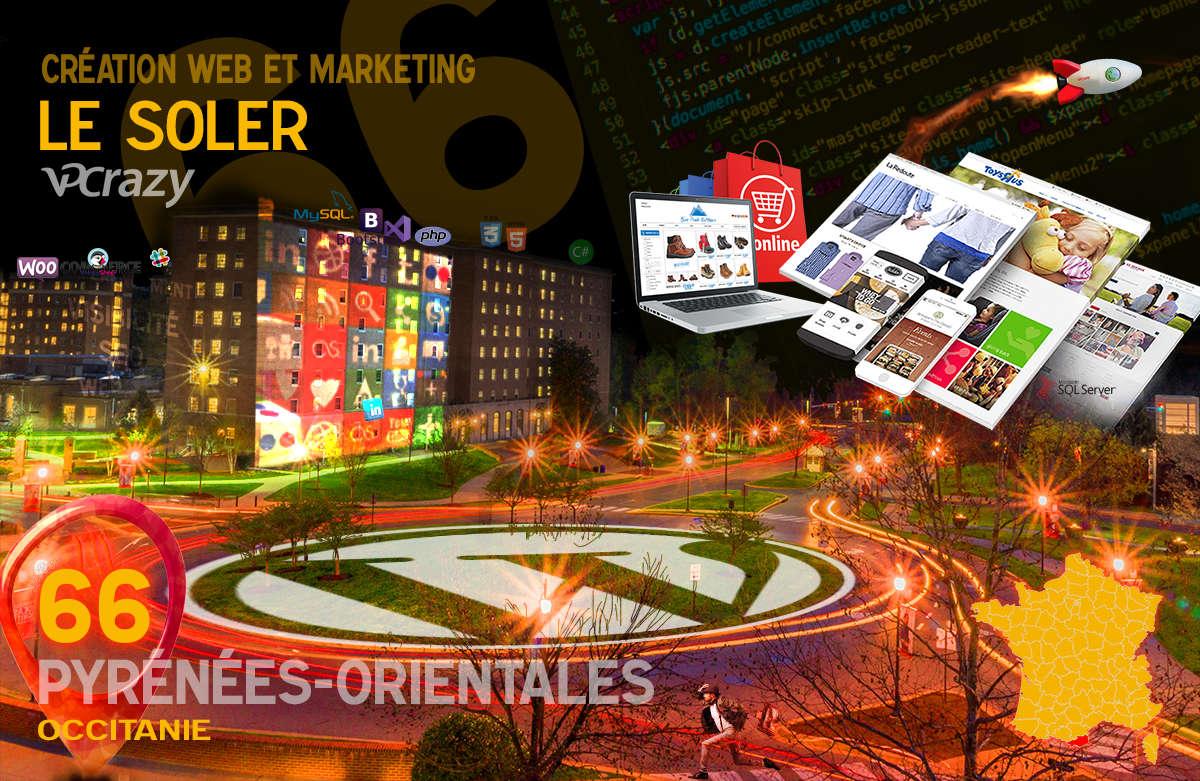 Créateur de site internet Le Soler et Marketing Web