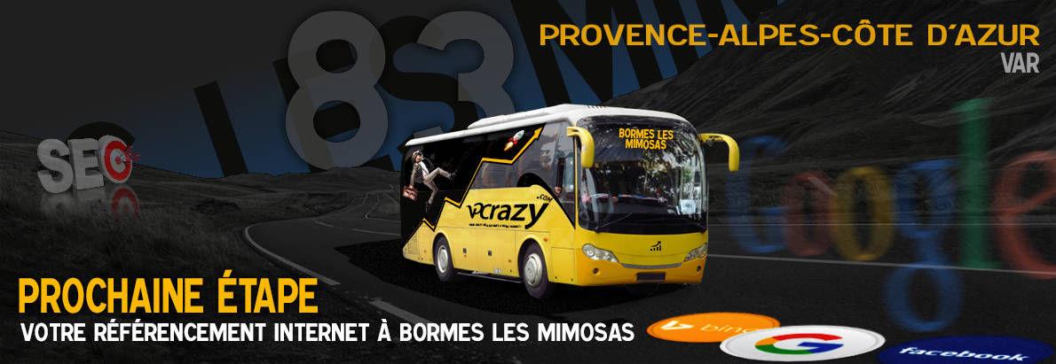 Agence SEO Google Bormes-les-Mimosas