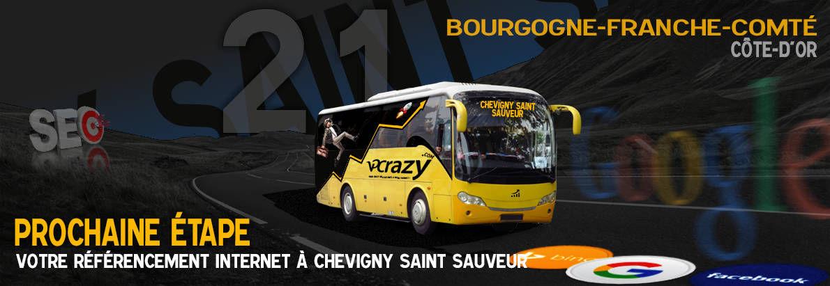 Agence SEO Google Chevigny-Saint-Sauveur