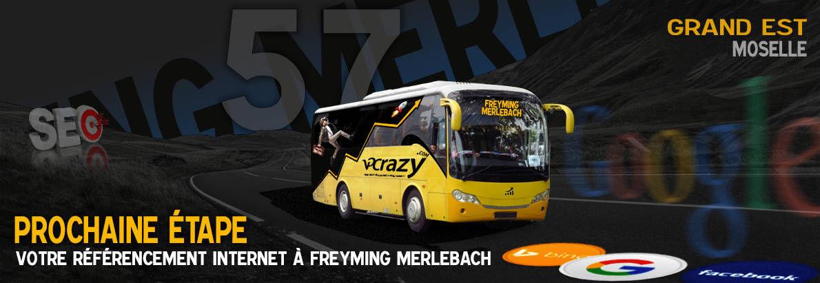Agence SEO Google Freyming-Merlebach