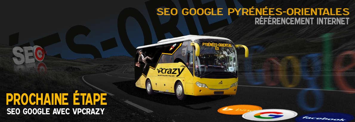 Agence SEO Google Pyrénées-Orientales