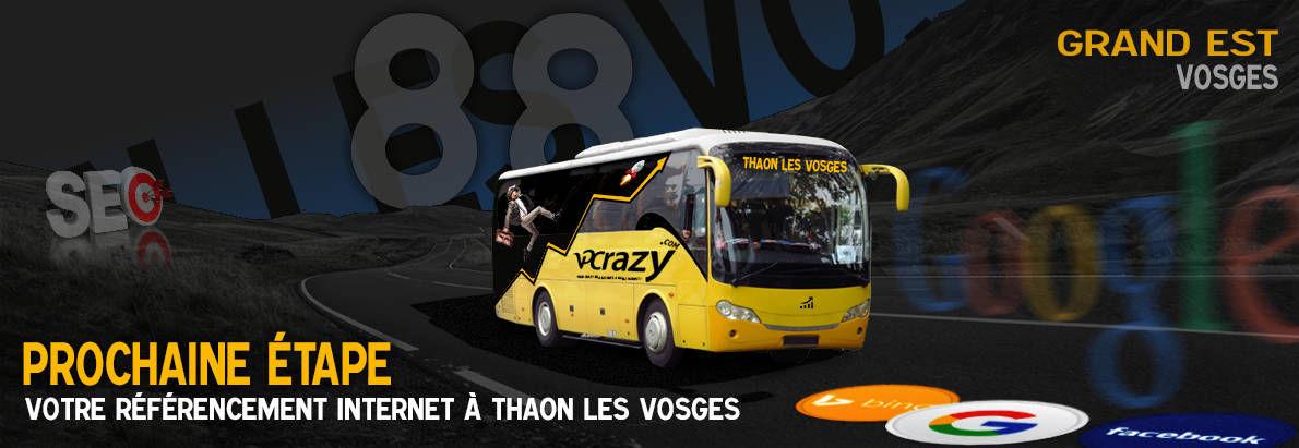 Agence SEO Google Thaon-les-Vosges