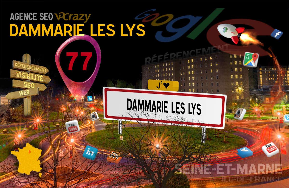 Référencement Internet Dammarie-les-Lys
