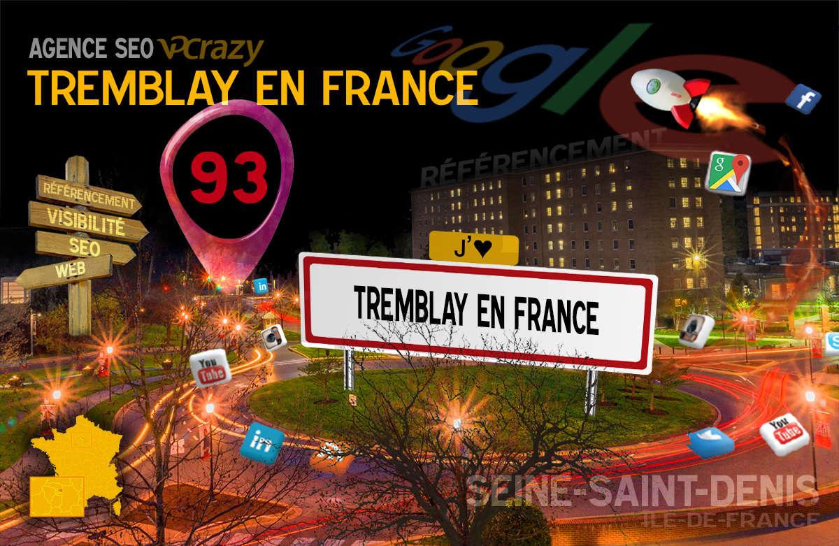 Référencement Internet Tremblay-en-France