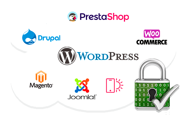 Site WordPress, site Internet Prestashop de l'Agence Web VPCrazy